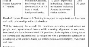 Sindh Bank Ltd Jobs 2019 - Latest Advertisement