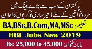 HBL Bank Jobs August 2019 - 200 Cash Officer Jobs for Male / Female