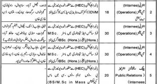 Punjab Food Authority Internship August 2019 - (116 Posts)  www.pfa.gop.pk