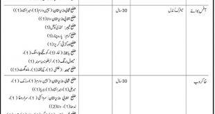 NADRA September Jobs 2019 - Latest New Jobs in NADRA Pakistan