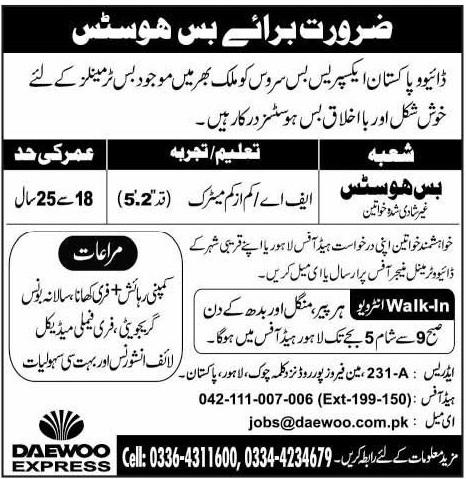 Daewoo Express Jobs 2020