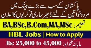 HBL Jobs December 2019