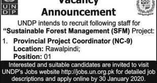 United Nations Development Programme Islamabad Jobs 2020