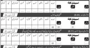 Public Health Engineering Department Jobs 2020
