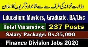 Finance Division Jobs 2020
