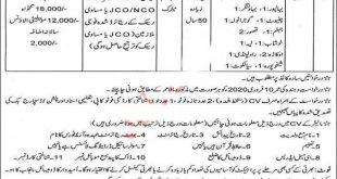 Literacy & Non Formal Basic Education Punjab Department Jobs 2020