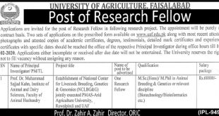 University of Agriculture Faisalabad Jobs 2020