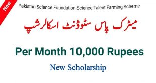 PSF Scholarship for Matric 2020