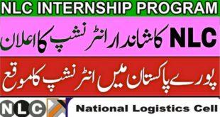 NLC Internship 2020
