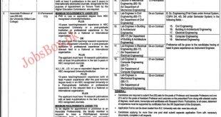 BZU Multan Jobs 2020
