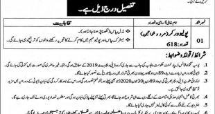 DHA Rawalpindi Jobs March 2020