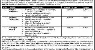 Jamshoro Power Company Ltd Jobs March 2020