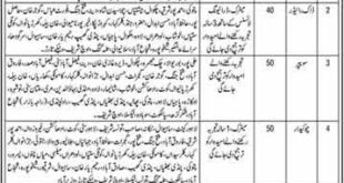 Punjab Land Record Authority Jobs 2020