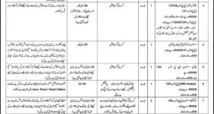 Prime Ministers Office Jobs June 2020