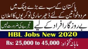 HBL Cash Officer Jobs July 2020