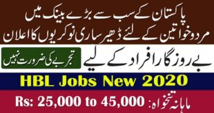 HBL Cash Officer Jobs July 2020