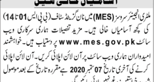 MES Jobs August 2020