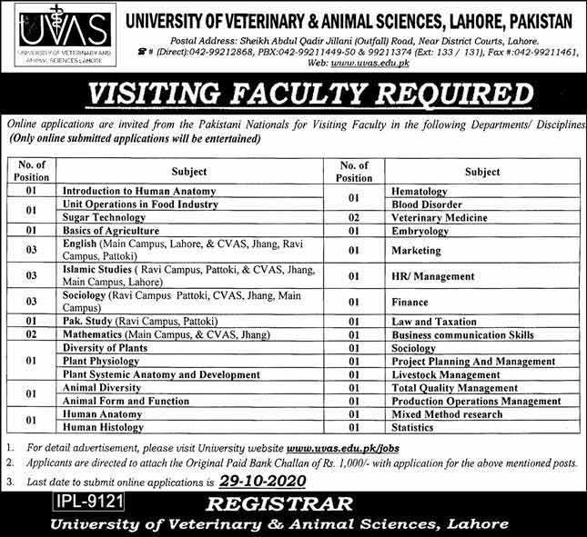 UVAS Jobs 2020 Lahore Advertisement Apply Online