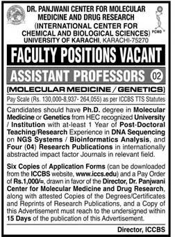 Assistant Professor Jobs November 2020