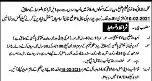 Elementary & Secondary Education Jobs 2021