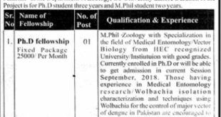 Government College University GCU Lahore Jobs 2021