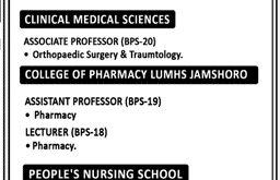Liaquat University of Medical & Health Sciences Jobs 2021