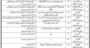 Planning and Development Sindh Jobs 2021