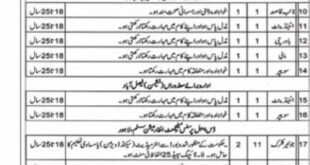 Social Welfare and Bait-ul-Maal Punjab Jobs 2021