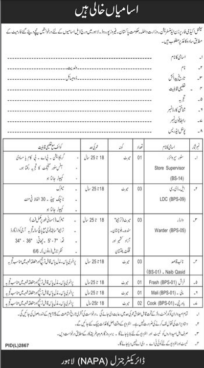 National Academy for Prisons Administration NAPA Lahore Jobs 2021