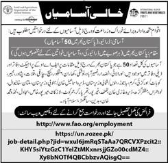 FAO Jobs April 2021